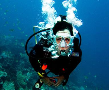 Diving the Florida Keys